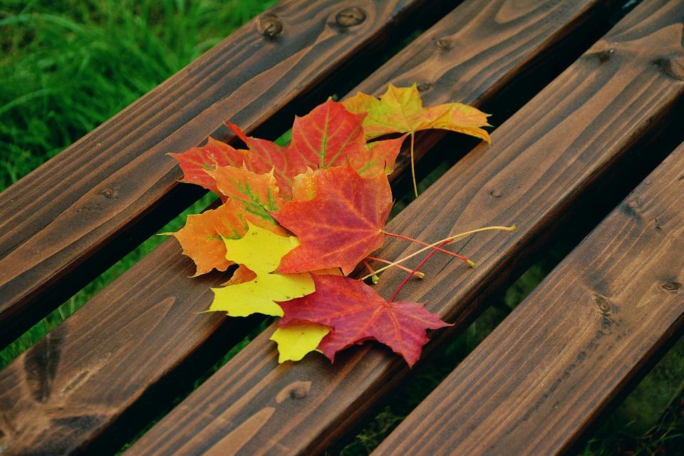 Fall energy-saving tips